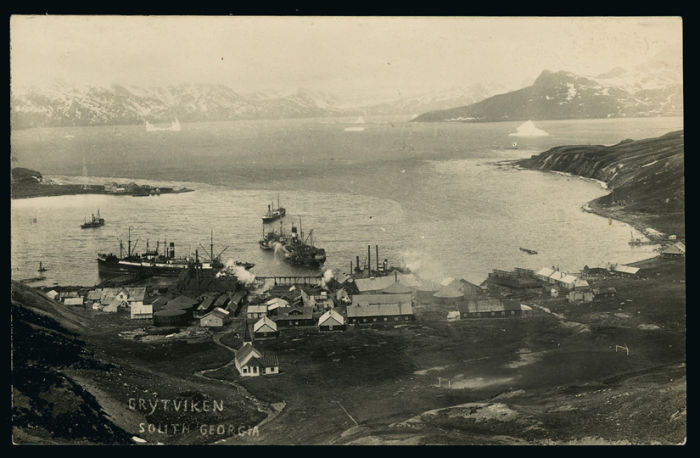 Whaling in the Antarctic